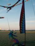 Kites on beach in Provincetown, Massachusetts