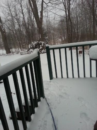 snow begins