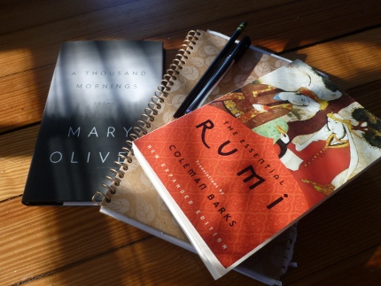 Poetry in sunlight.  My writing tablet and some Mary Oliver and Rumi to read.