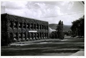 The view of the R & D building from the park (1950)