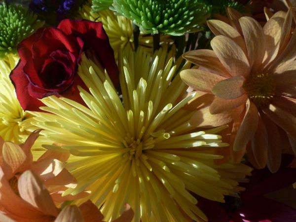 flowers (600x450)