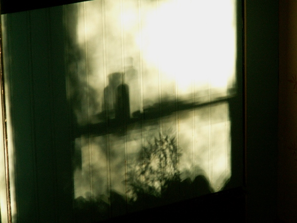 "a ""sun print"" of the light coming in the kitchen window"