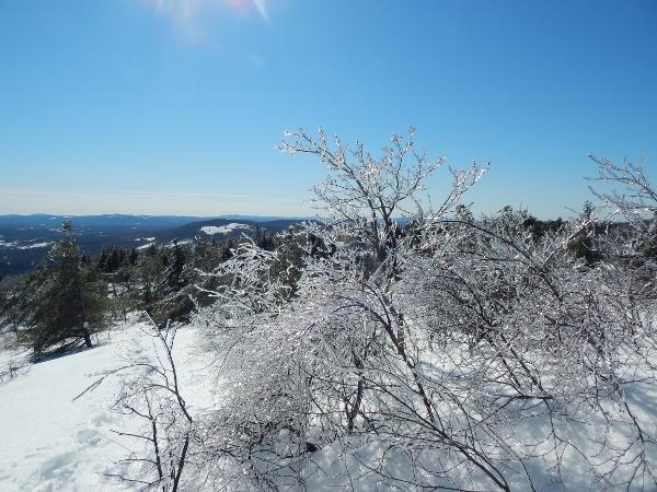 sparkly winter wonderland