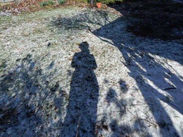 winter shadow (600x450)