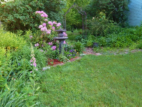 """This is the side yard.  There is a border garden on the left along the neighbors fence and a perennial bed that loops around to herbs on the right (not in view).  I the back is an arbor that goes to the back yard that I grow pole beans on.  One of the neighbors calls this view """"the secret garden""""."""