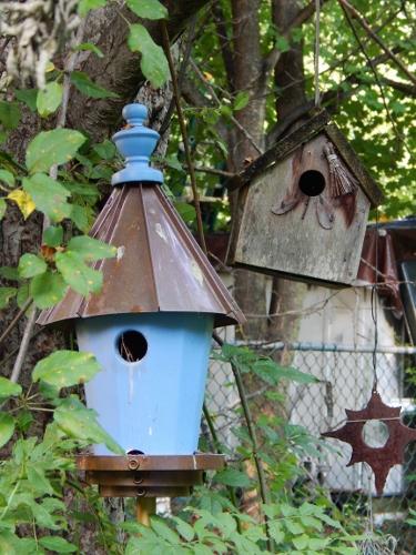 bird houses (375x500)