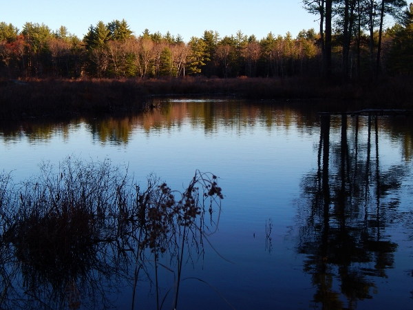 Beaver Pond on the Cocheco River at sunrise