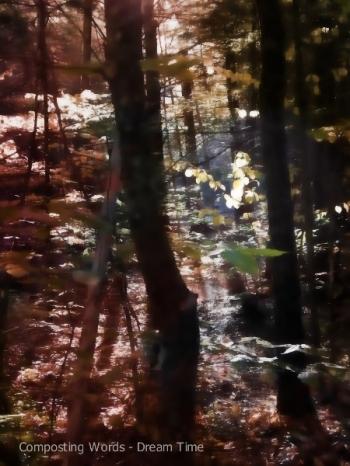 b dreamy forest_pe3 (450x600)