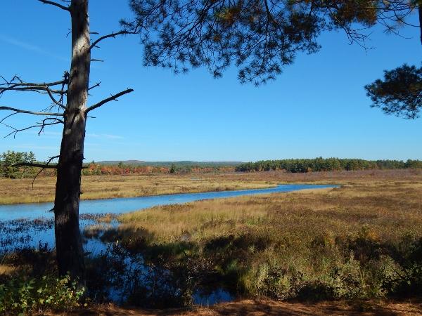 Merrymeeting Marsh fall 3 (600x450)