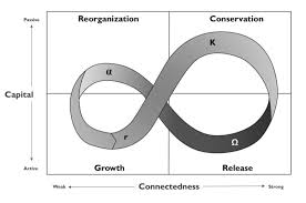 growth rebirth curve